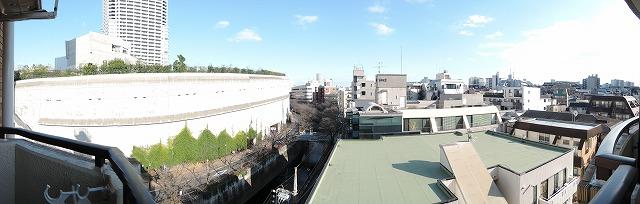 べランダより目黒川沿いの桜並木が一望出来ます。