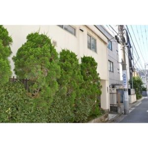 ドミセラベルス 神泉 徒歩1分 渋谷 徒歩圏内 フルリノベーション済 綺麗な室内 カウンターキッチン 室内洗濯機置き場 防犯カメラ 独立洗面台 など嬉しい設備 角部屋 陽当り良好 の1LDKです